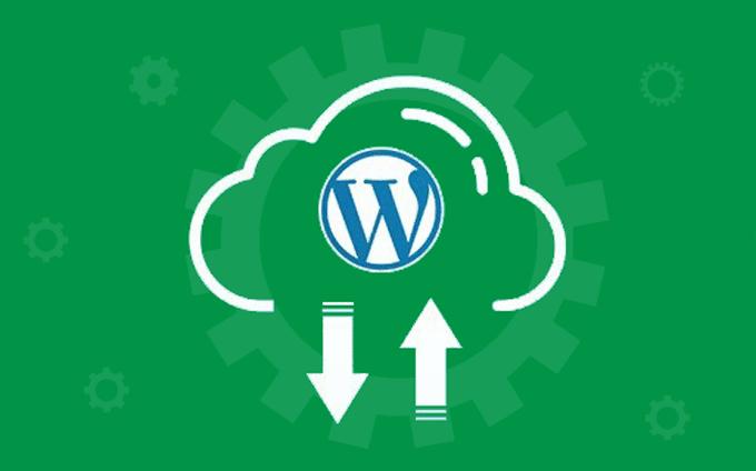 WP Maintenance & Backup Services